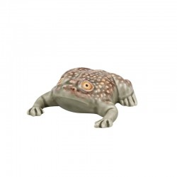 LARGE TOAD 11